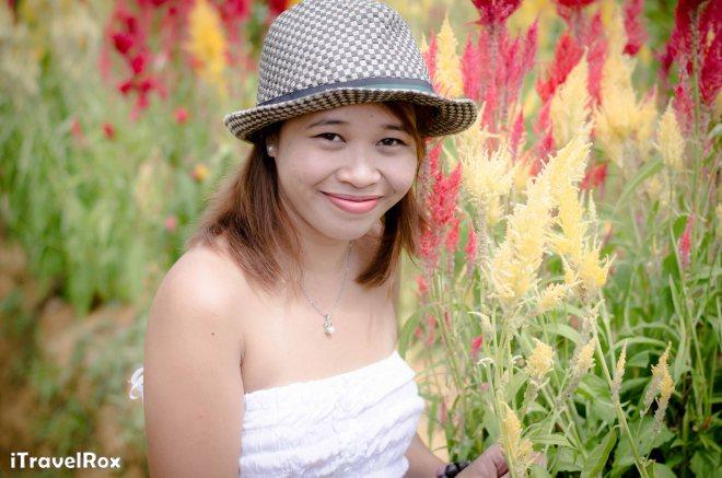 Sirao Flower Farm